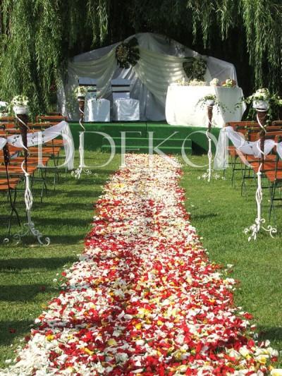 Zeremonie im Freien, Blütenblätter-Teppich