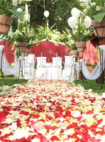 Teppich aus Blumenblättern in einer Zeremonie im Freien
